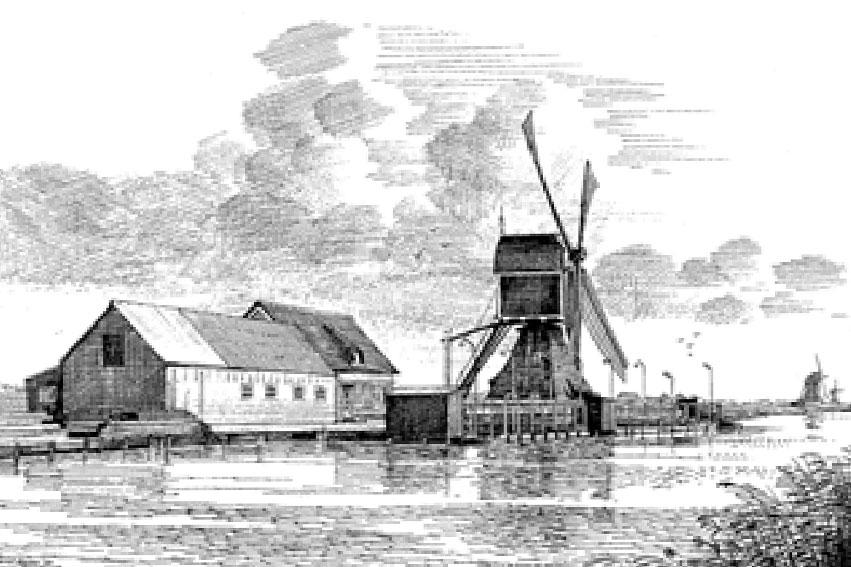 Viswinkel Bij De Molen