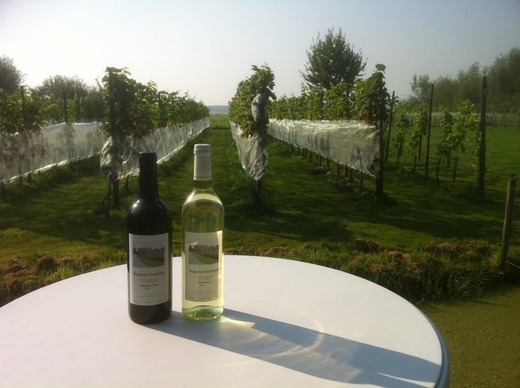 Open Dag Goudriaanse Wijngaarden