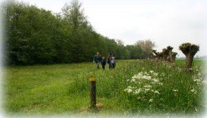 Lentefeest Natuur- en Vogelwacht De Vijfheerenlanden