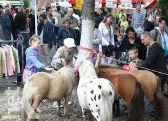 Sint Jacobus Paardenmarkt