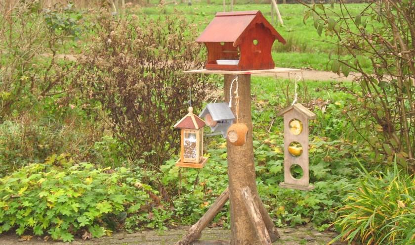 Tuinvogeltelling bij Natuur- en Vogelwacht Alblasserwaard