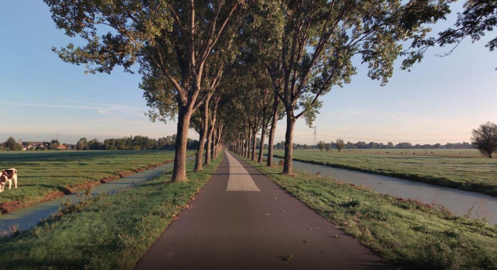 Vlietweg