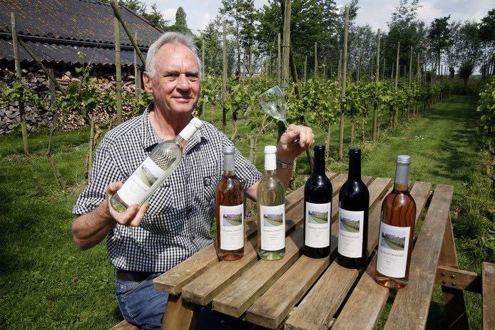 Open dag wijngaard Domein Oosteind 2020