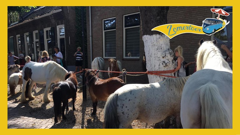Paardenmarkt – Zomertoer