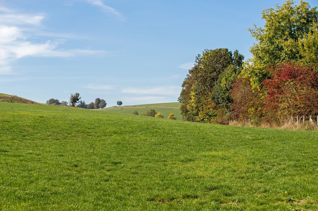 Lezing bij Natuur- en Vogelwacht de Vijfheerenlanden: Limburg en de Wadden - Bob Luijks