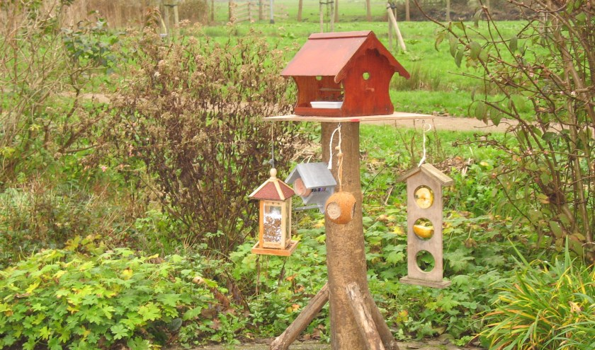 Tuinvogeltelling in het Streeknatuurcentrum