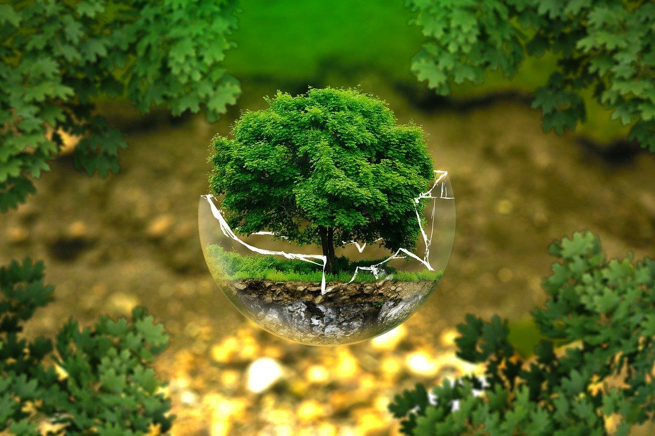 Environmental Protection 326923 1280
