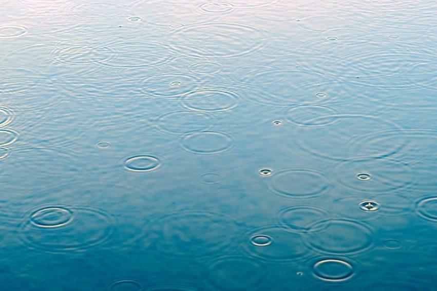 Artikel Nieuwe Oogst: Regen Maakt Geen Einde Aan Droogte