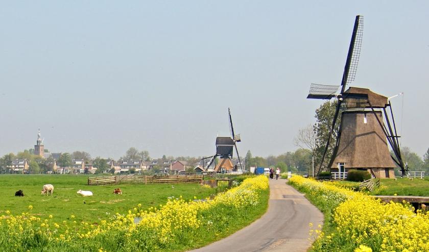 Artikel Kontakt: Subsidies Molens Zuid-Holland Verlengd Tot En Met 2023