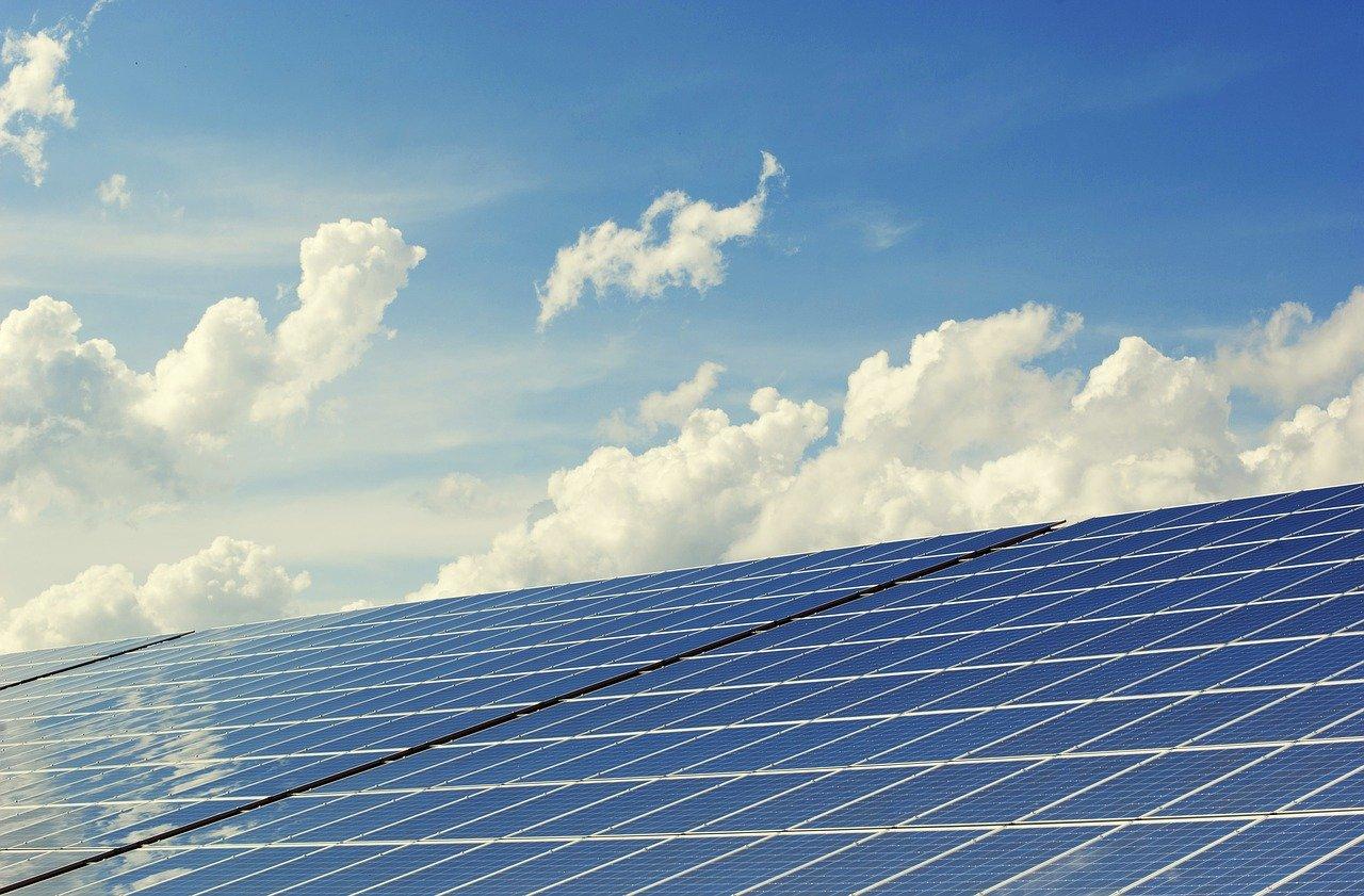 Artikel AD: 'Ontzie De Natuur In Zuid-Holland In Het Streven Naar Duurzame Energie'