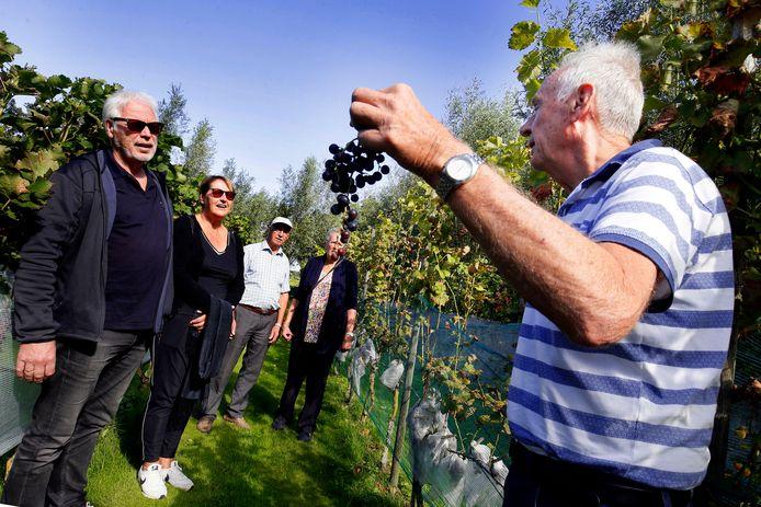 Artikel AD: Lokale Wijnboeren Presenteren Eigen Kweek: 'Onze Druiven Verdienen Echt Wat Meer Aandacht'