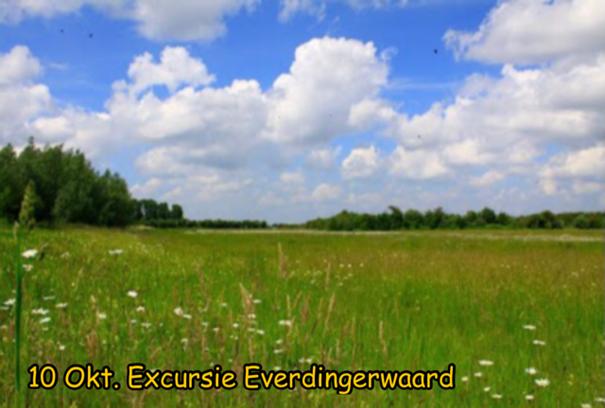 Vogelexcursie bij Everdingen o.l.v. Eduard Polfliet